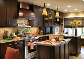 kitchen traditional modern kitchen designs with dark wood