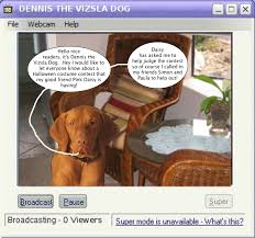 Vizsla Halloween Costume Dennis Invites Readers Daisys Contest Jpeg