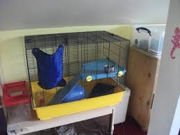 Cheap Rat Cage Sw England Cheap Rat Cage Bristol Reptile Forums