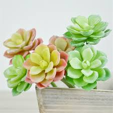 Flower Decorations For Home by Online Get Cheap Plastic Succulents Aliexpress Com Alibaba Group
