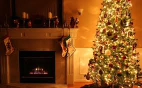 indoor decorative trees for the home interior christmas theme living room imanada decorating ideas