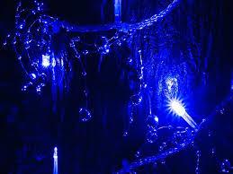 blue led christmas string lights blue led string lights fatetofatal com