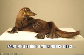 Platypus Meme - paint me like one of your french girls french platypus