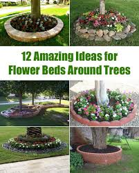 Good Backyard Trees by The 25 Best Landscaping Around Trees Ideas On Pinterest