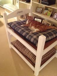 Cat Bunk Bed Bunk Bed Cat Condo Easy Do It Yourself Project Cat Bed
