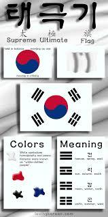 Korea Flag Icon South Korean Flag Infographic Loving Korean Boyfriend In Korea