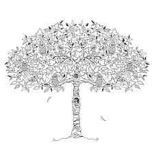 owl tree by johanna basford the secret garden coloring book
