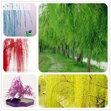 Willow Tree Home Decor Popular Willow Tree Trees Buy Cheap Willow Tree Trees Lots From
