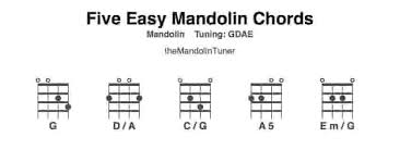 easy mandolin chords and how to play them themandolintuner
