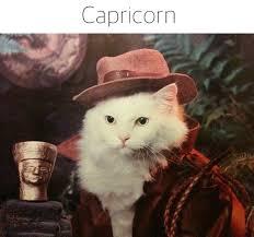 Capricorn Meme - capricorn meme tumblr