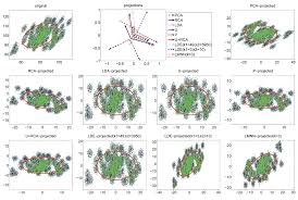 learning linear discriminant projections for dimensionality