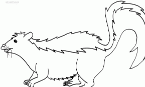 realistic skunk coloring pages skunk coloring flower the skunk