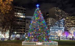 boston christmas tree lighting 2017 celebrating 100 years of connection nova scotia business inc