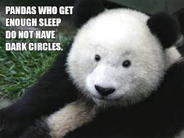 Funny Sleep Memes - funny panda sleep meme shareology