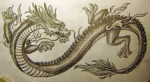 black and grey chinese dragon tattoo design