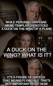 What Is S Meme - airplane what is it imgflip