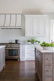 White Washed Oak Kitchen Cabinets Gray Wash Oak Kitchen Cabinets Design Ideas