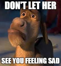 Feeling Sad Meme - no contact rule should you use it and if so how here s