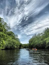 South Carolina wild swimming images Edisto river 12 counties south carolina sc jpg