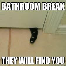 Bathroom Meme - 25 best bathroom memes images on pinterest funny stuff funny