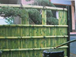 landscape bamboo fence design with bamboo material installed and