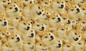 Doge Meme - doge why we can t agree on how to pronounce the internet meme