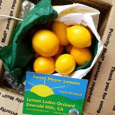 five ideas for preserving meyer lemons recipe meyer lemon