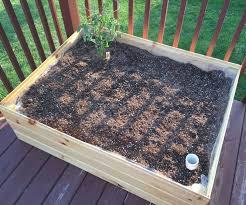 Cheap Patio Pots Best 25 Cheap Planters Ideas On Pinterest Planters Shade