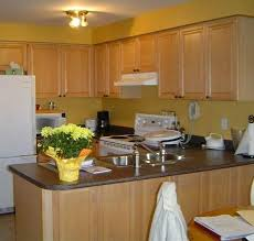 kitchen backsplash ideas with oak cabinets nest u2013 buying a