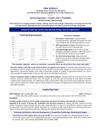 Resume Format Pdf For Sales by Chief Executive Cover Letter