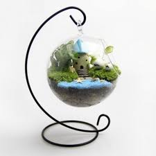 terrarium glass container with metal stand gardening on carousell