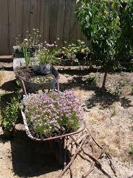 Creative Garden Decor 20 Best Garden Ideas Images On Pinterest Garden Ideas Botany