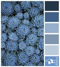 a sea inspired color palette color palettes midnight blue and