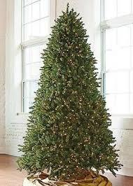 fresh cut noblis fir artificial tree 7 traditional