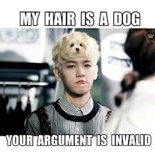 Your Argument Is Invalid Meme - exo memes exo 엑소 amino