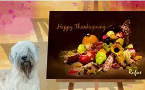 german shepherd thanksgiving cards cards