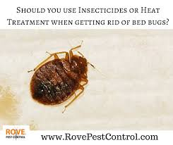 Kill Bed Bugs Should You Use Insecticides Or Heat Treatment When Getting Rid Of
