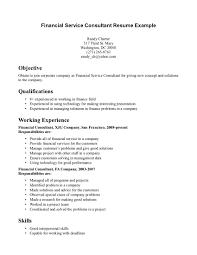 Sample Resume Finance Personal Background Sample Resume Resume For Your Job Application