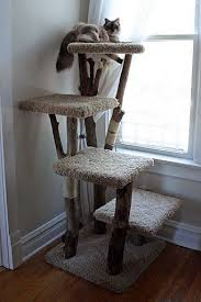 the 25 best diy cat tree ideas on pinterest diy cat tower cat