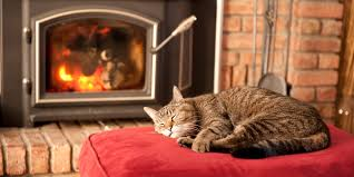 9 unusual ways to keep your home warm without turning up the heat