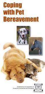 pet bereavement pet bereavement leaflet poetry and books dignity pets