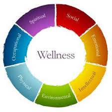 synonyms for wellness wheel pdf