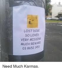 Lost Doge Meme - lost doge so loved very missing much reward 03 8652 1453 need much