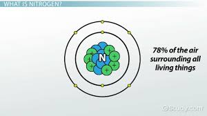 what is nitrogen cycle u0026 formula video u0026 lesson transcript