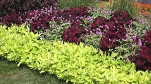 exciting garden landscape design photo inspiration tikspor