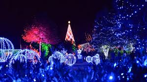 christmas lights in asheville nc nc arboretum s winter lights returns in dazzling display the