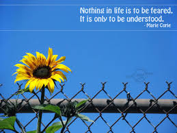 quotes about life download quotes about life wallpaper wallpapersafari