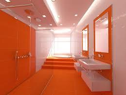 orange bathroom ideas 9 best themed bathrooms images on room