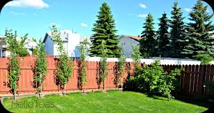exterior awesome brown brick mosaic fence with green grass