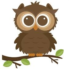 desert owl coloring page owl coloring page clipart hanslodge cliparts